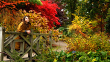 Visit Wisley in autumn